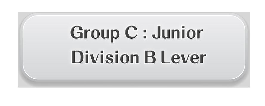 C. Junior Division B Lever Preliminary Round: HKD$400