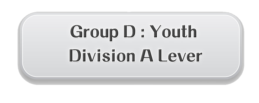 D. Youth Division A Lever Preliminary Round: HKD$420